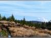 dsc_0121_panorama